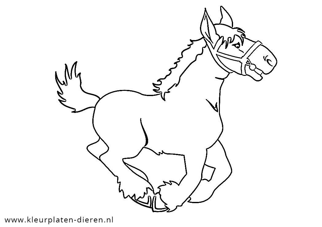 For Derby Jockey Coloring Pages Coloring Pages