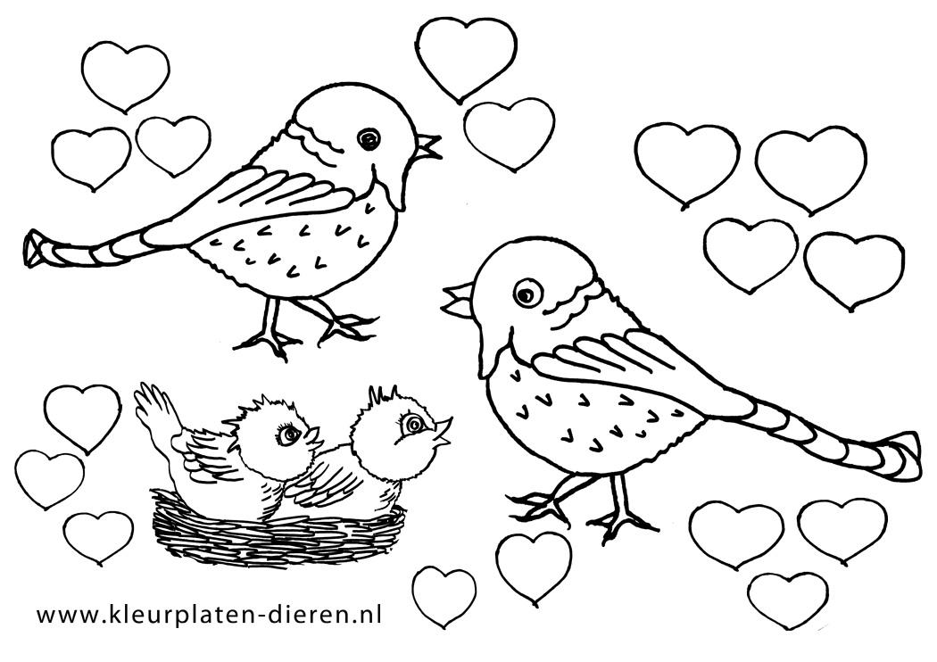 Kleurplaten Prinsessen Dieren.Hartjes Kleurplaat Vogels Kleurplaten Dierenkleurplaten Dieren