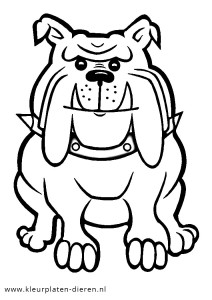 kleurplaten bulldog kleurplaat