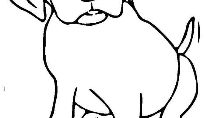 Kleurplaten Echte Dieren.Honden Archives Kleurplaten Dierenkleurplaten Dieren