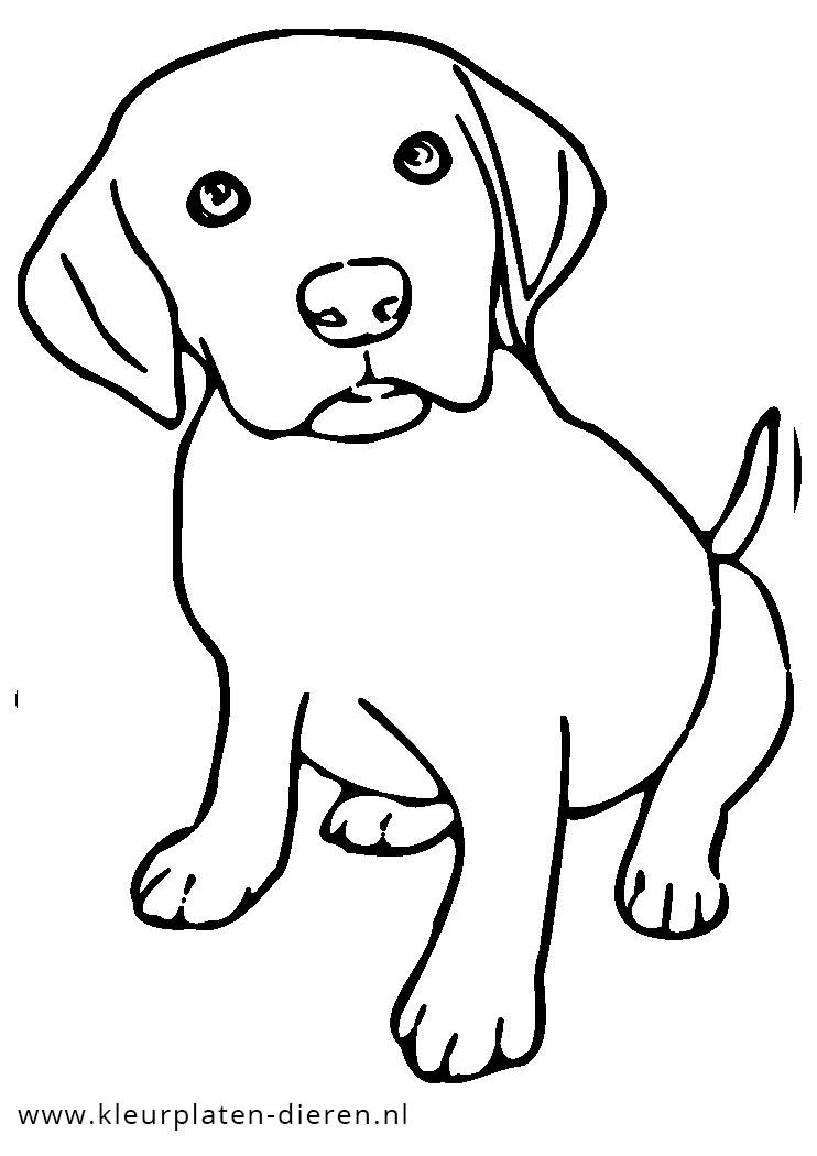 kleurplaat puppy kleurplaten dierenkleurplaten dieren