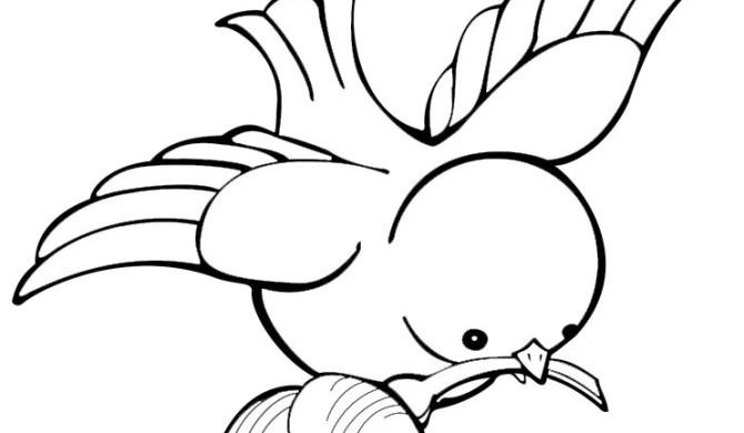 Kleurplaten Over Vogels.Vogels Archives Kleurplaten Dierenkleurplaten Dieren