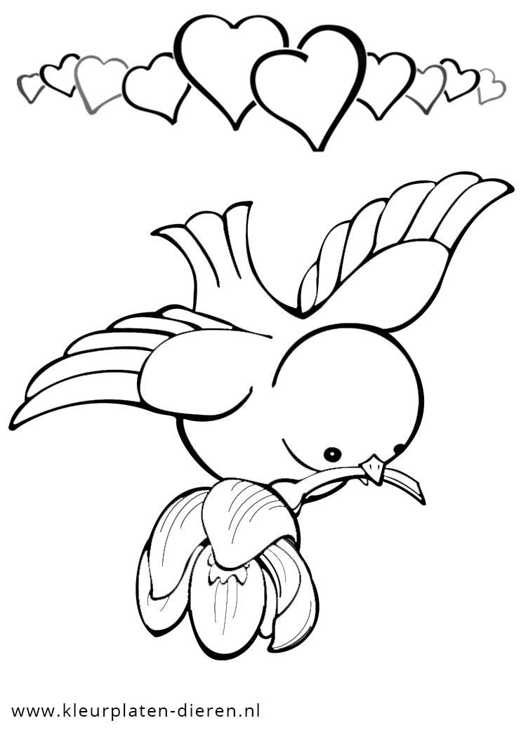 kleurplaat vogel met hartjes kleurplaten