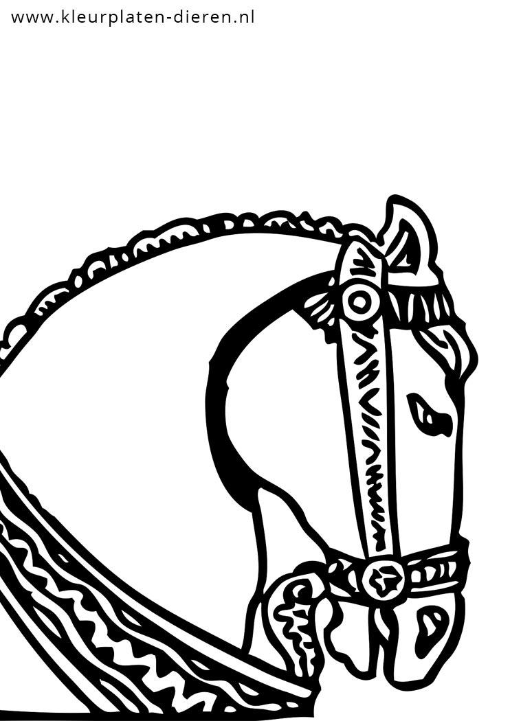 Kleurplaat Volwassenen Dieren Paarden Kleurplaat Met Cowboy Kleurplaten